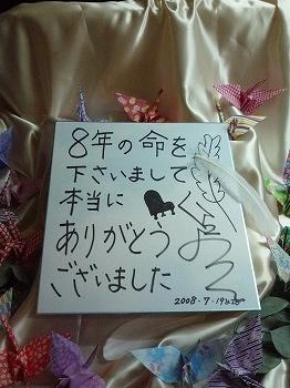倉橋ヨエコ直筆色紙