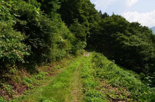 大秋山郷への道