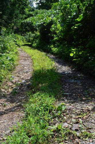 秋山郷 牧之の道