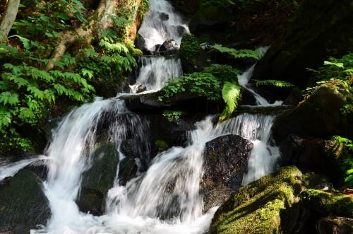 見玉不動尊の滝