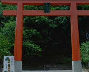 藤島神社一の鳥居 by Google