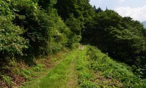 Thumbnail of post image 072