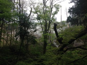 箱根、上湯配水池付近の噴気