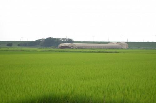 関宿の農村風景