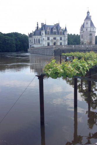 フランス洪水 シュノンソー城ぶどう棚