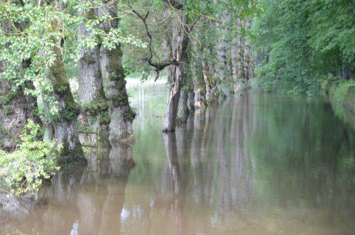 フランス洪水 シュノンソー城周辺