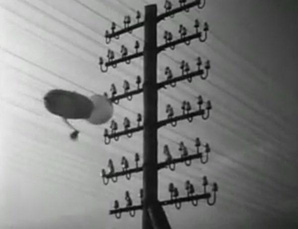 フリッツ・ラング「M」に登場する「ベルリン電柱」1931年